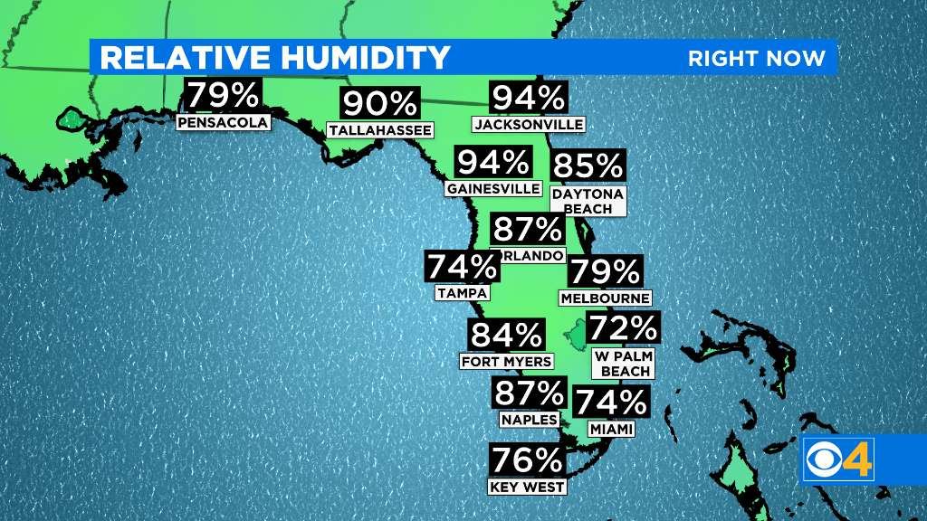 WEB RELH FL Relative Humidity