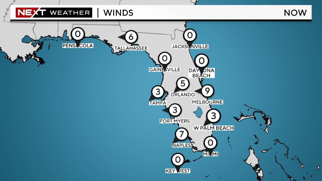 WEB WIND FL Wind